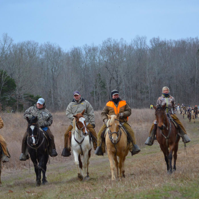 Tennessee Walking Horses and Field Dog Trial with Larry Garner + Fox Chasing, Steeplechase, and more!